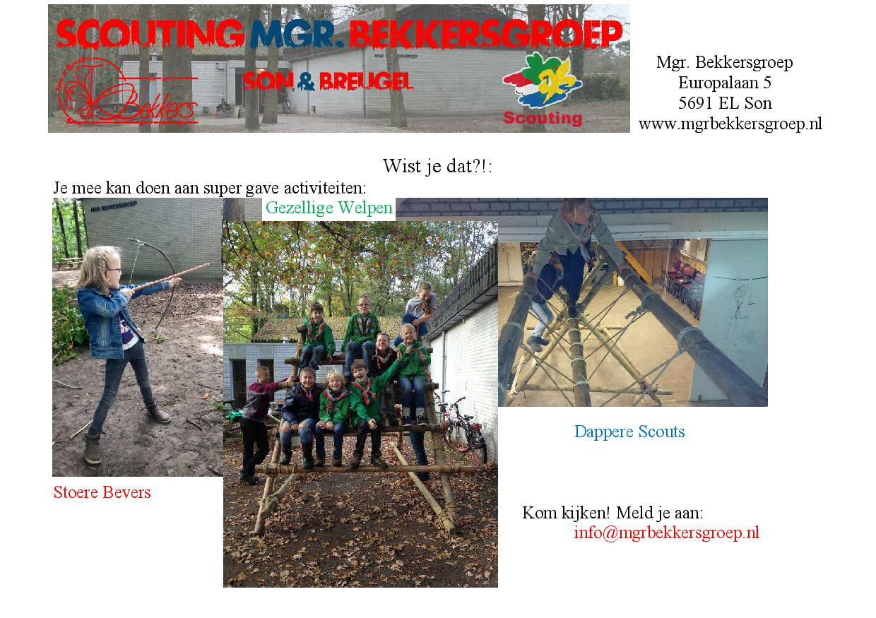 Promotie scouting3