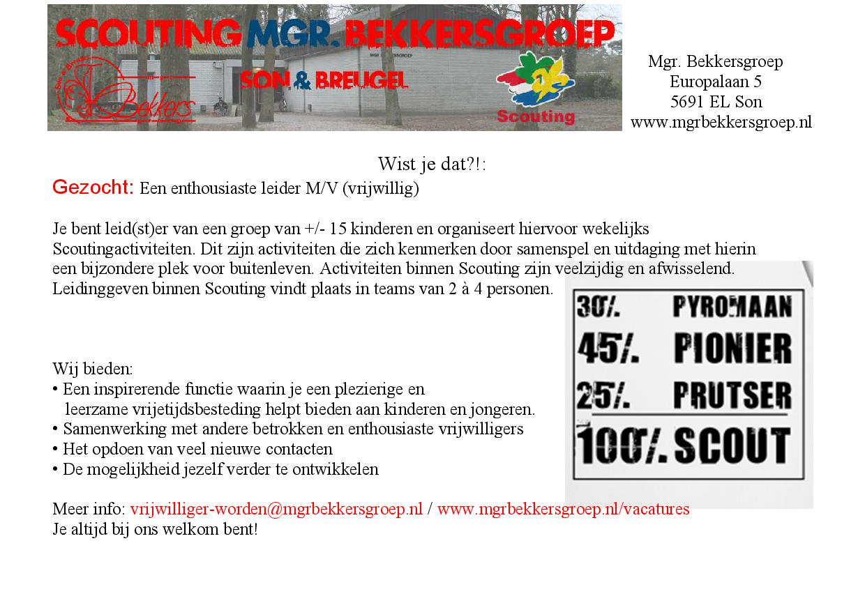 Promotie scouting8